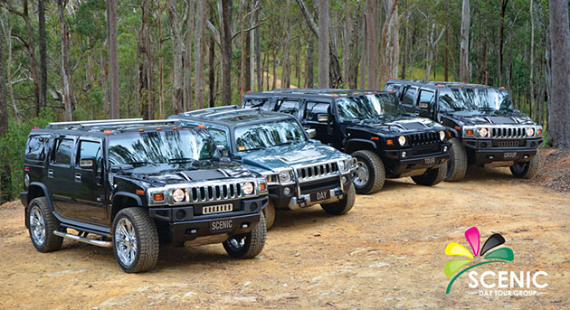 Hummer 4WD Safari Scenic Day Tour